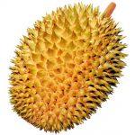 Whole Durian Thumbnail